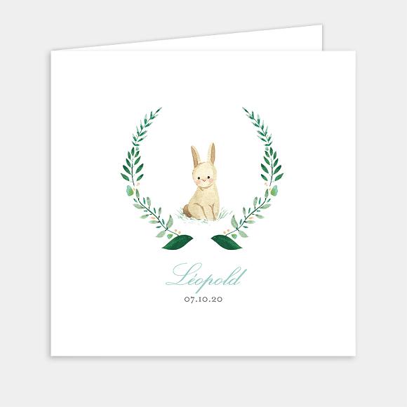 faire-part-de-naissance-lapin-garcon